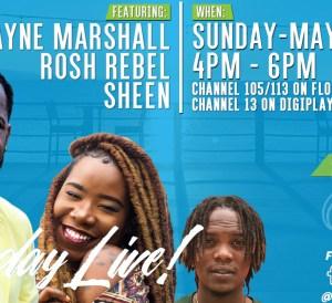 Wayne Marshall, Rosh Rebel