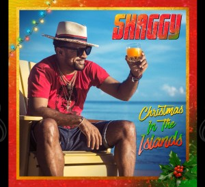 Christmas in the Islands Shaggy