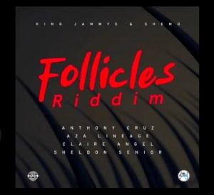 Follicles Riddim - EP