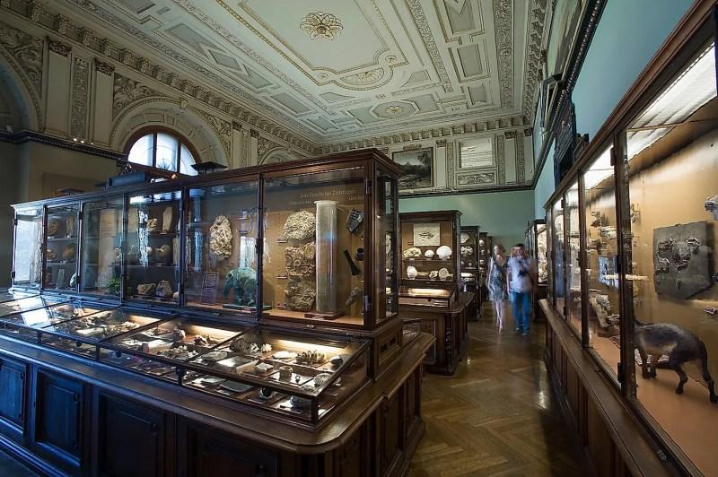 Dünyanın En İyi Doğal Tarih Müzeleri Natural History Museum, Viyana, Avusturya.  Resim kredisi: Jorge Royan / Wikimedia.org
