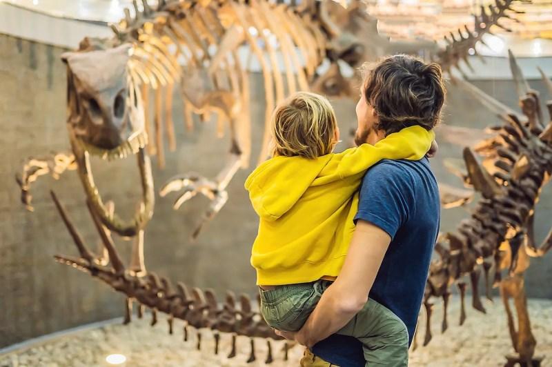 Dünyanın En İyi Doğal Tarih Müzeleri Pekin Doğa Tarihi Müzesi.  Resim kredisi: Elizaveta Galitckaia / Shutterstock.com