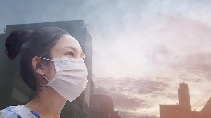 Quando um novo vírus é criado, ele pode ganhar a capacidade de infectar e se espalhar entre as pessoas.
