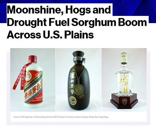 baijiu news bloomberg united states sorghum exports to china