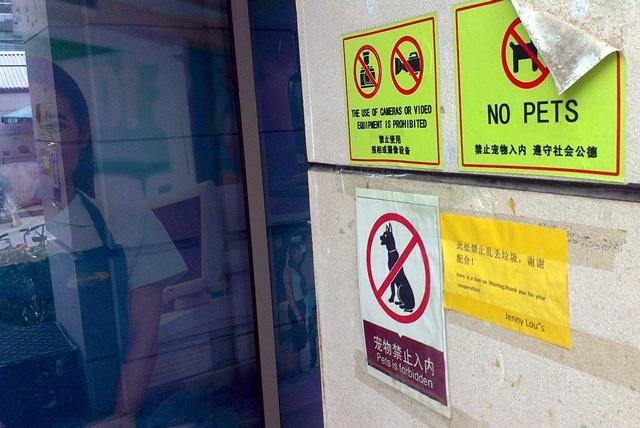 bb daily jenny lou xindong road sanlitun no pets cameras