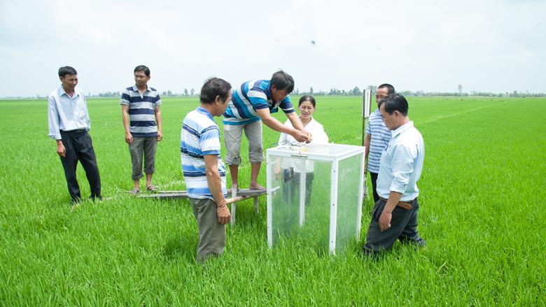 """Résultat de recherche d'images pour """"ia agriculture Vietnam"""""""
