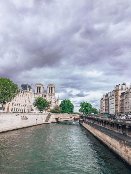 Katedra Notre Dame widoczna z mostu Saint Michel