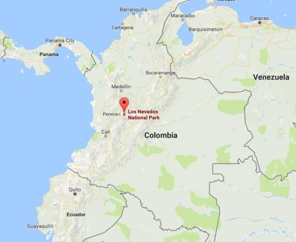 The Most Popular National Parks in Colombia - WorldAtlas.com  Los Nevados National Park