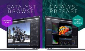Catalyst Browse Suite 2017.3