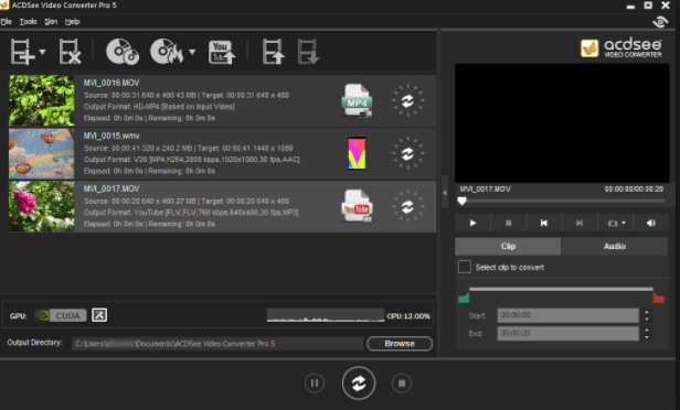 ACDSee Video Converter Pro 5 crack download