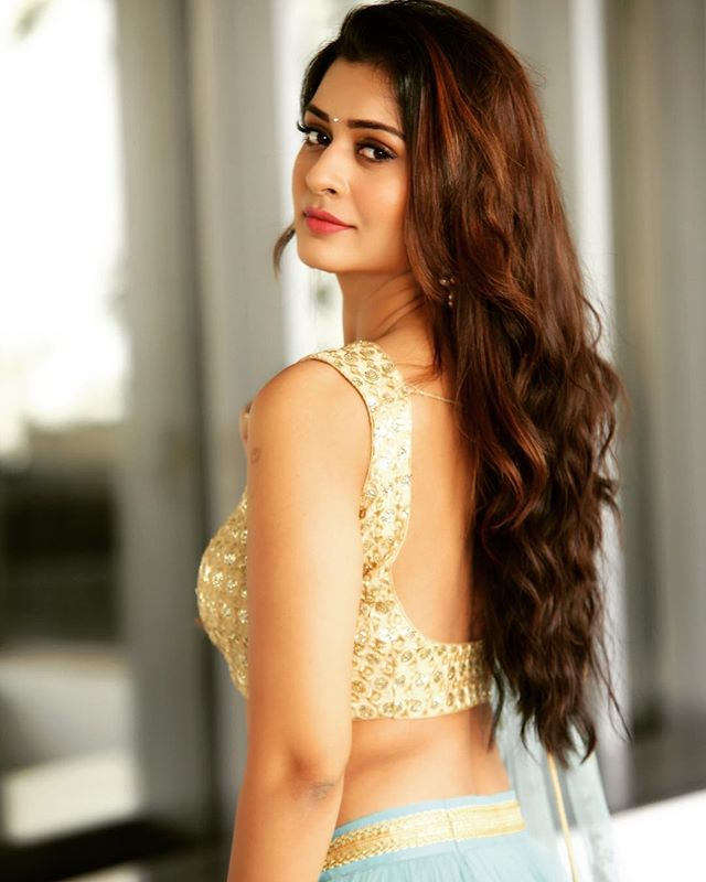 Payal Rajput Gorgeous Look in Saree Backside South Movie 2020