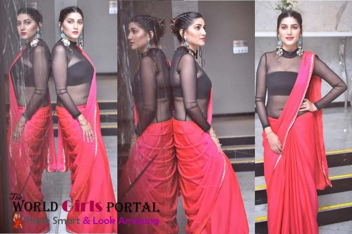 Sapna Chaudhary Beautiful Pink Saree and Black Blouse on Instagram Picture viral