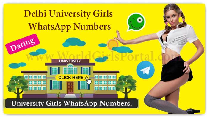 Delhi University Girls WhatsApp Number for Friendship, Live Chat, Hostel Girls, Campus Student