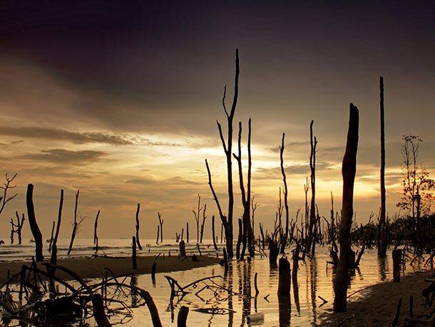 Pantai Batu Laut Banting
