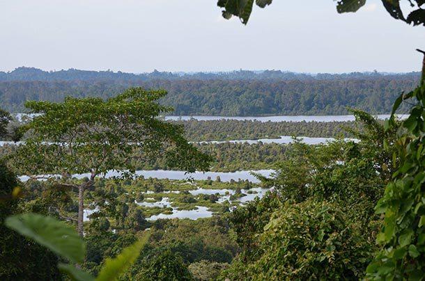 Loagan Bunut National Park Miri