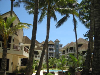 Guests during Ambassador In Paradise are greeted by a palm-fringed beach view.