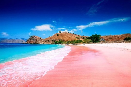 Pink Beach Lombok