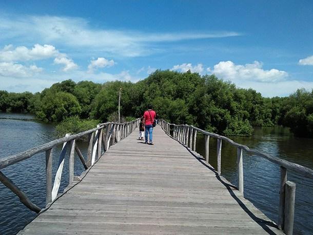Taman Wisata Alam Angke Kapuk