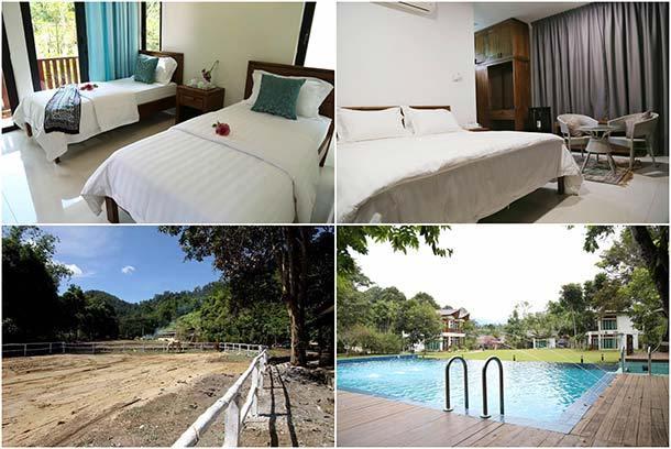 Bidaisari Resort Janda Baik - Room Image