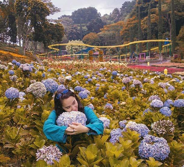 Selecta Recreational Park
