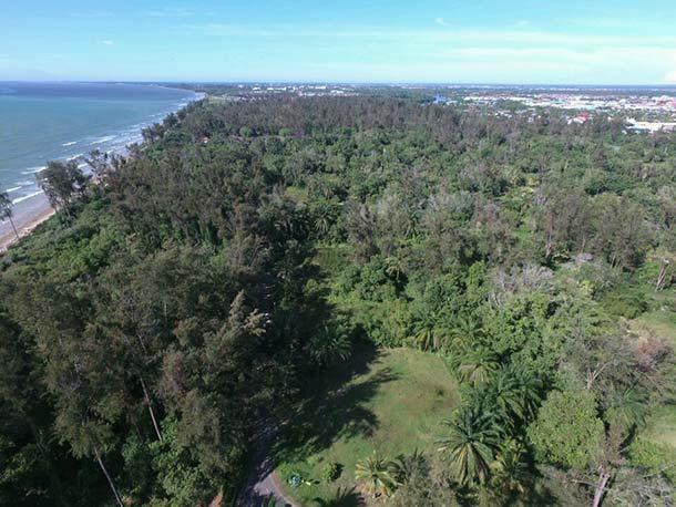 Piasau Nature Reserve Miri