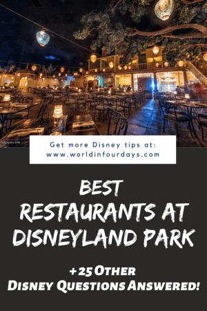 Can You Bring Food Into Disneyland   Best Restaurants Disneyland