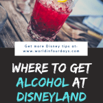 Can You Bring Food Into Disneyland | Alcohol Disneyland