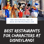 Can You Bring Food Into Disneyland | Character Dining Disneyland