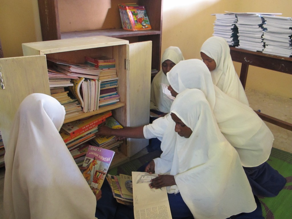 Sizini Primary School Pemba  (3)