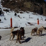 HUSKYMAN:  DOG SLEDDING IN THE PYRENEES