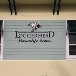 LOGGERHEAD MARINELIFE CENTER'S SUMMER MARINE BIOLOGIST CAMP (Florida)