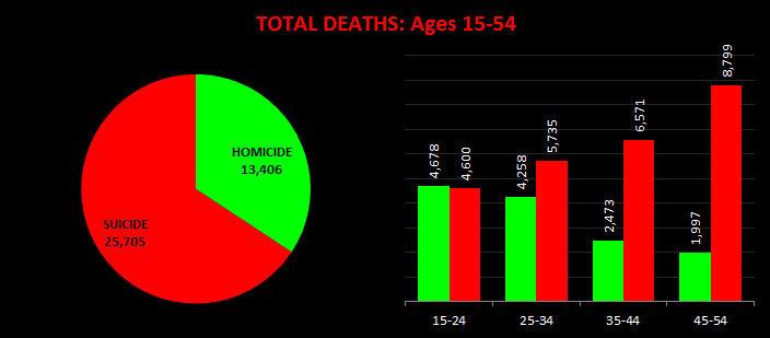 USA Homicide Vs Suicide
