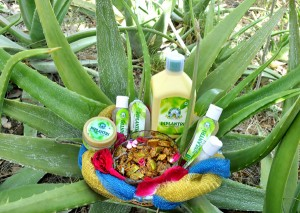 Aloe Vera products from the small scale industries