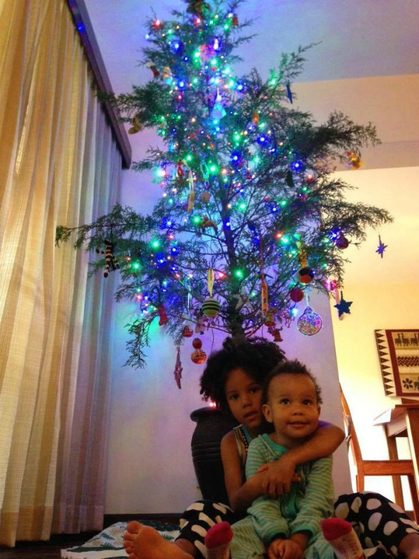 Christmas Tree in Kenya