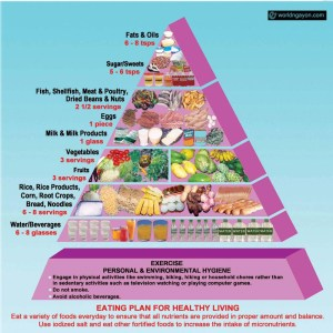 daily nutritional guide pyramid