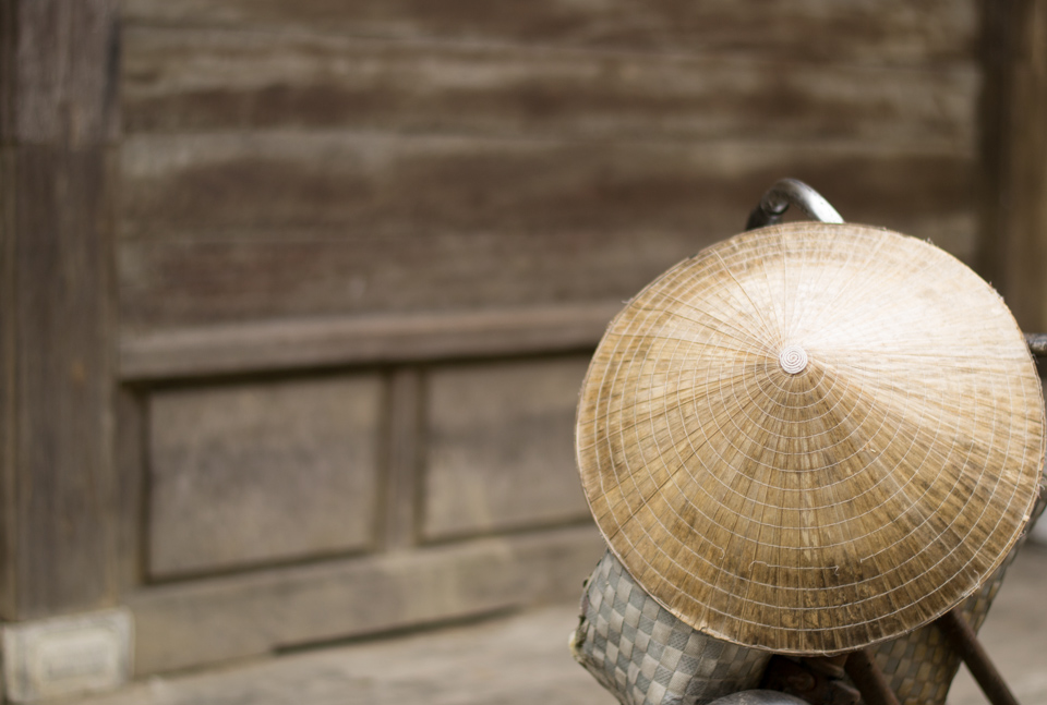 Traditional vietnamese conical hat