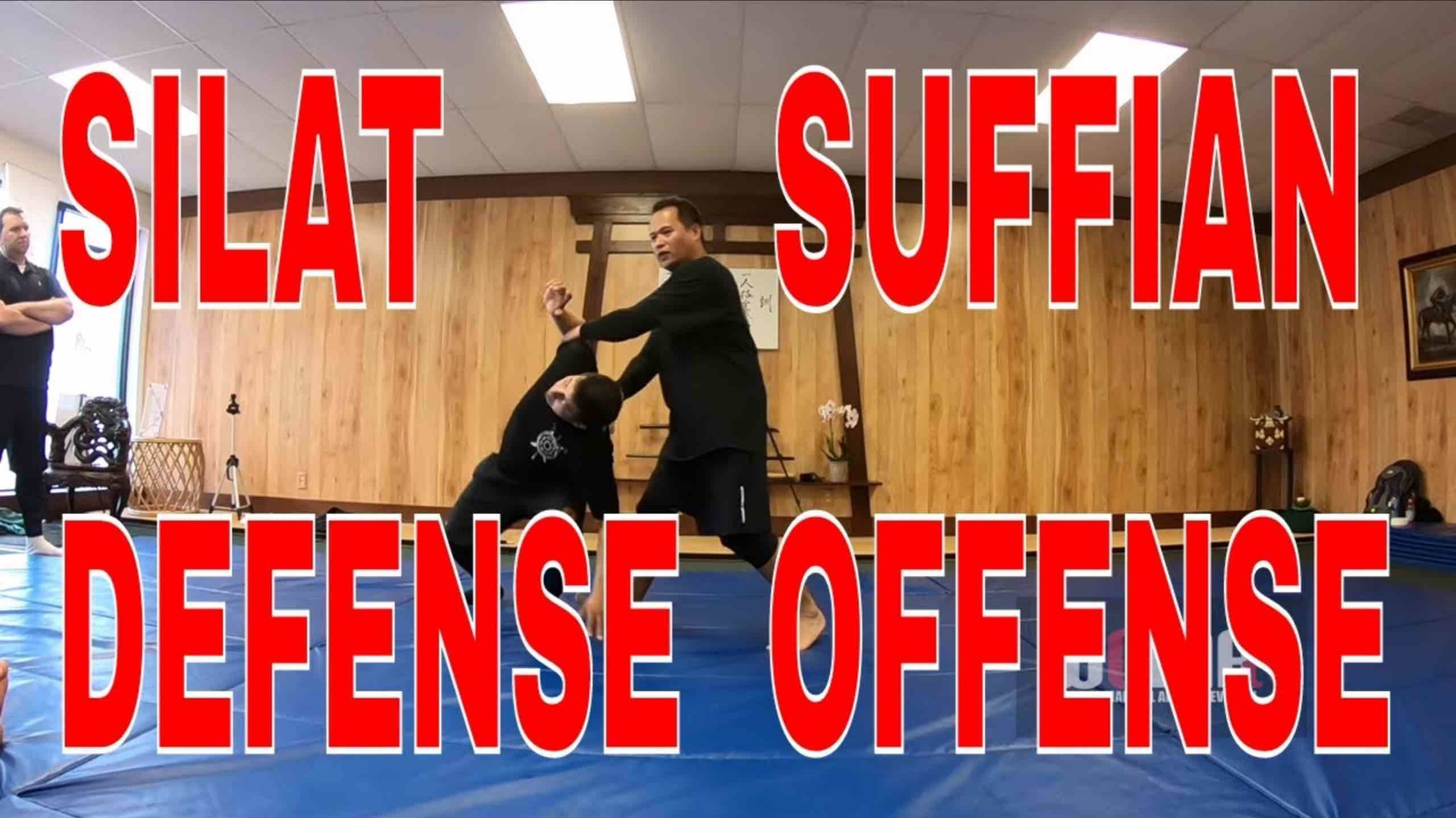 Defense Offense FLOW SILAT Training