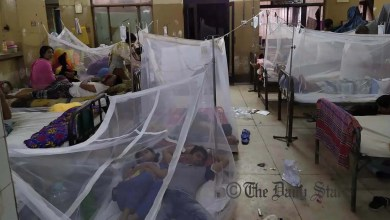Photo of Dengue situation may linger till sept: DGHS