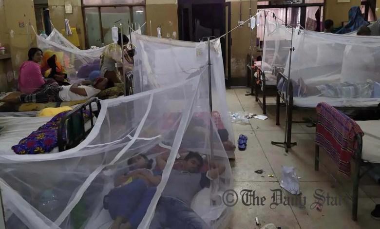 Dengeue situation may linger till sept: DGHS