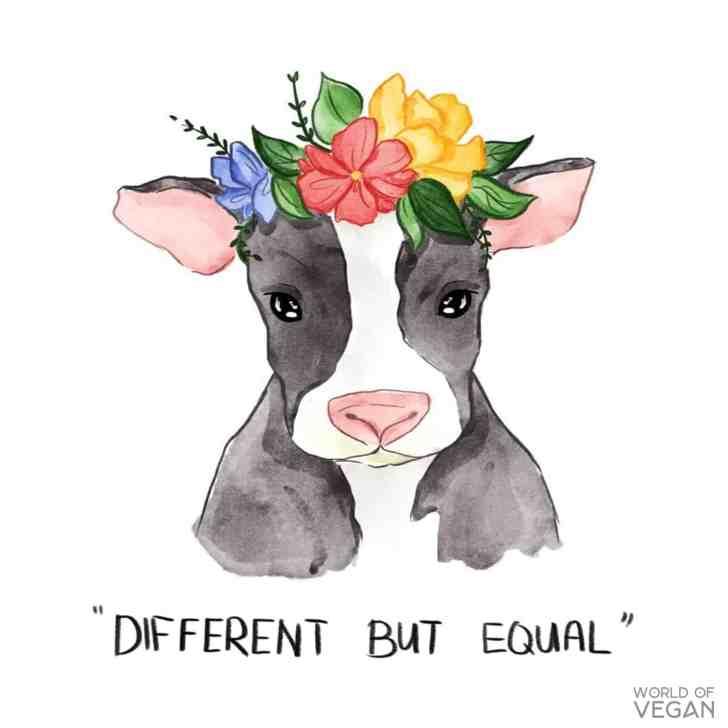 Cow Flower Crown   Vegan Illustration Cow   Vegan Art   WorldofVegan.com #vegan #art #illustration #animals #cows