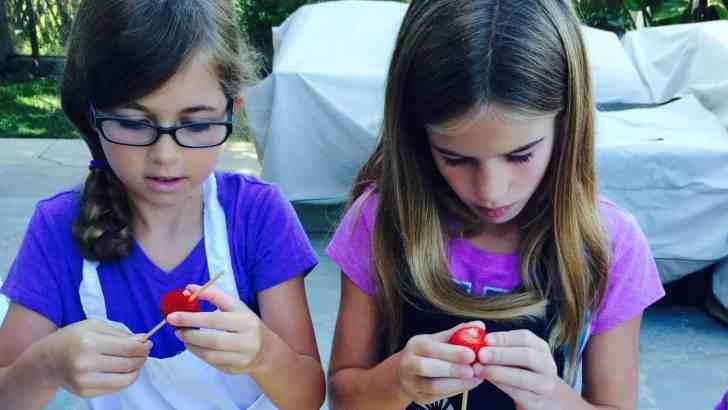 DIY Vegan Summer Camp For Kids