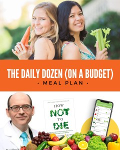 The How Not to Die Meal Plan