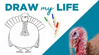 This 'Draw My Life' Video Will Make You Rethink Your Thanksgiving Feast