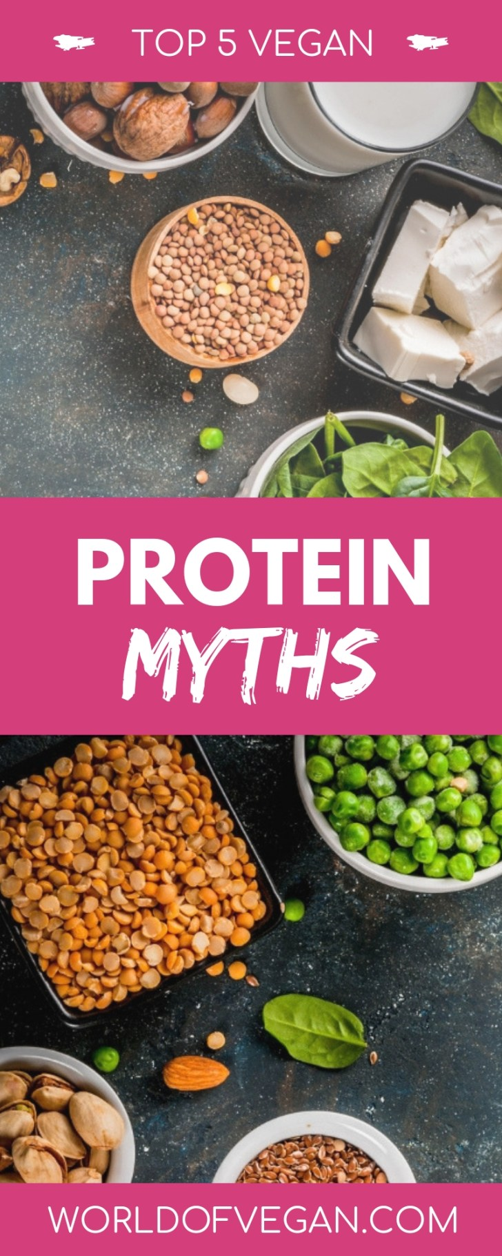 Top 5 Vegan Protein Myths Busted | WorldofVegan.com | #protein #athlete #vegan #vegetarian #health #nutrition