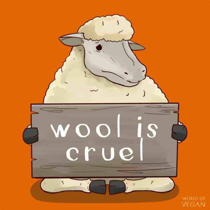 8 Reasons to Boycott Wool   WorldofVegan.com   #wool #sheep #animals #vegan #vegetarian