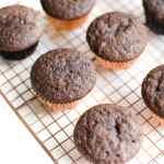 Vegan Chocolate Cupcakes Recipe | WorldofVegan.com | #cupcakes #vegan #dairyfree #chocolate #dessert #worldofvegan