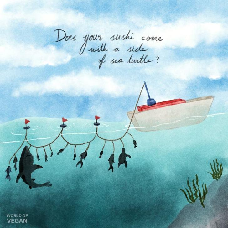 Long Line Fishing Illustration | World of Vegan Art