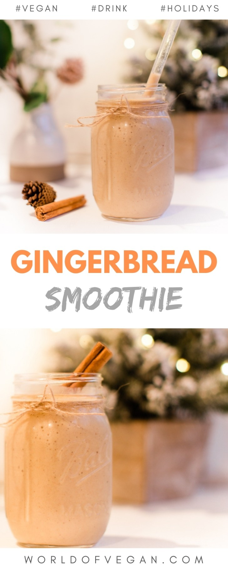 Vegan Gingerbread Smoothie Recipe