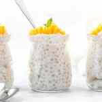 Vegan Tapioca Pudding Recipe Topped With Fresh Mango