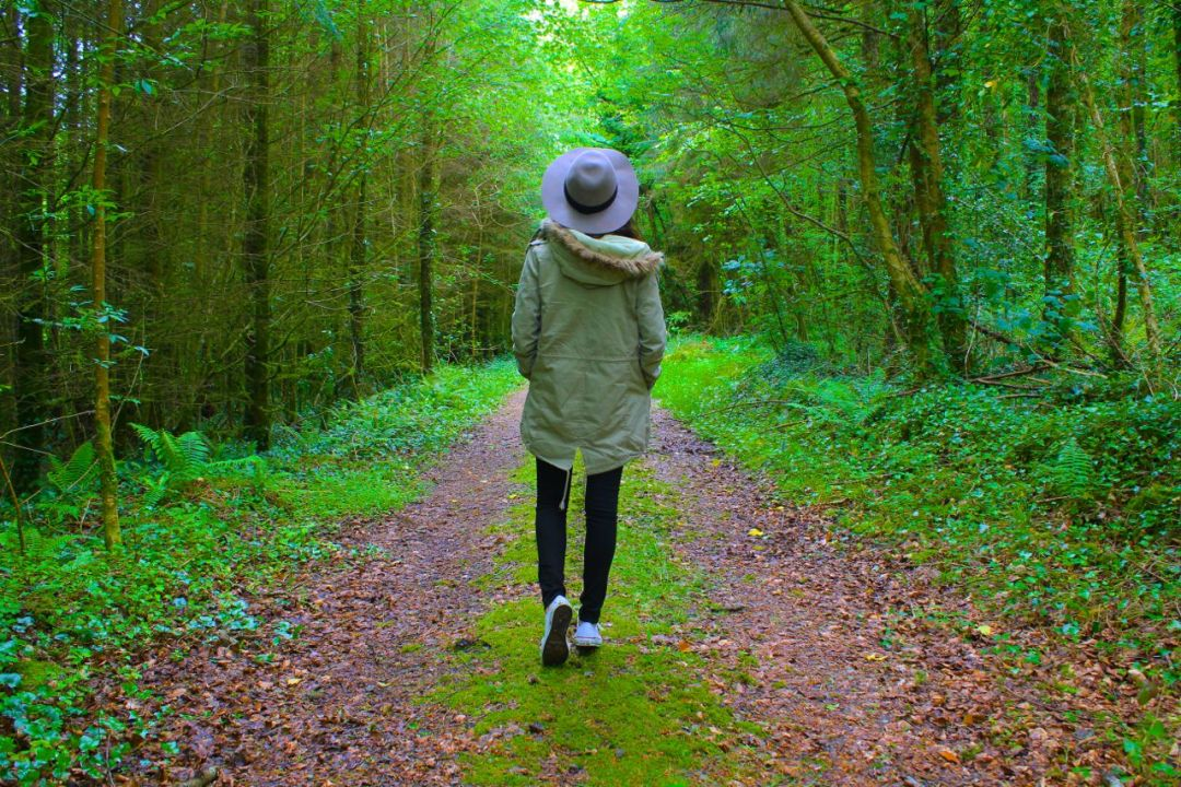 Brooke in Ireland