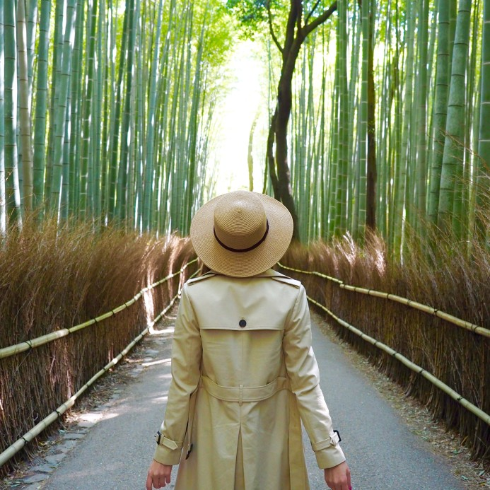 A Guide to Kyoto | World of Wanderlust